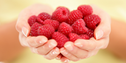 RASPBERRY KETONES AS A FAT BURNER: DO THEY WORK?